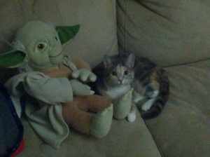 The force is strong with this one.
