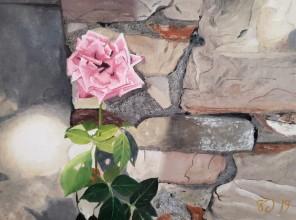Tuscan Rose – 12″ x 16″ Oil on Panel